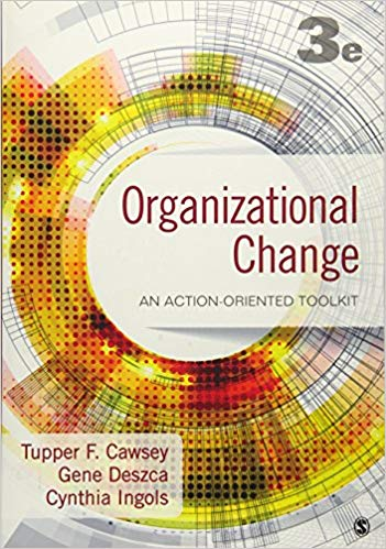 Organizational Change: An Action-Oriented Toolkit 3rd Edition